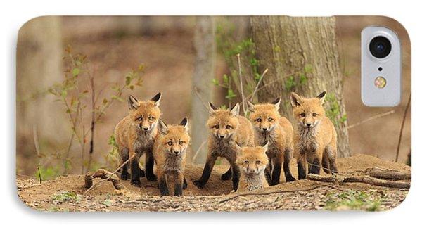 Fox Family Portrait IPhone Case