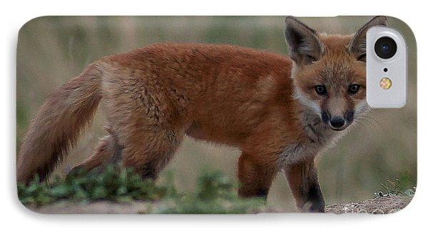 Fox Pup IPhone Case