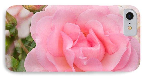 Fragrant Cloud Rose IPhone Case
