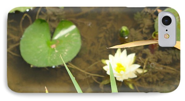 Fragrant Waterlily IPhone Case