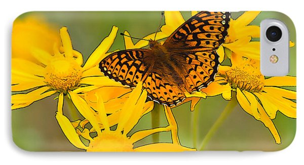 Fritillary IPhone Case