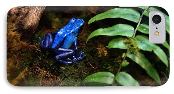 Frog Blues IPhone Case