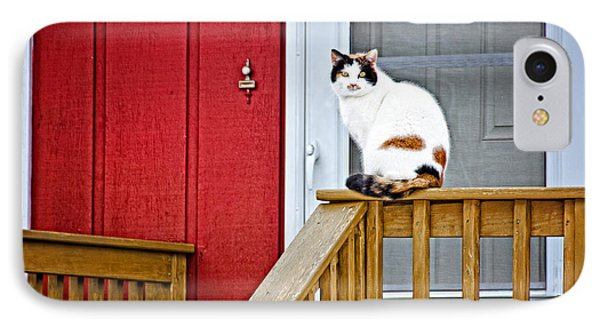 Front Porch Cat IPhone Case