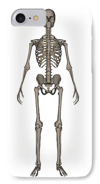 Appendicular Skeleton IPhone 8 Case