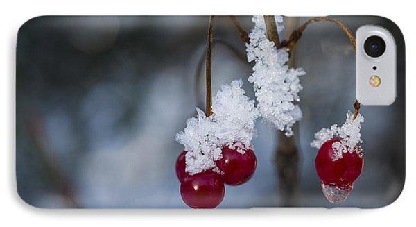 Frost Berries IPhone Case