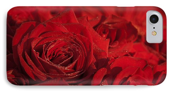 Frozen Dew On Red Roses IPhone Case