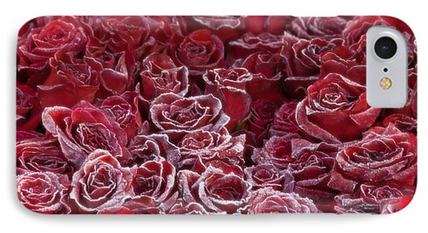Frozen Tipped Red Roses IPhone Case