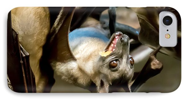 Fruit Bat Fedding Time IPhone Case