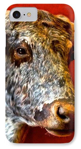 Full Of Bull IPhone Case