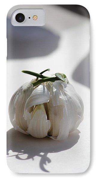 Garlic Clove IPhone Case