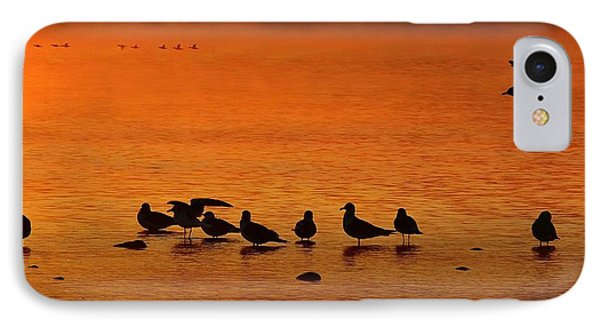 Gathering At Sunrise IPhone Case