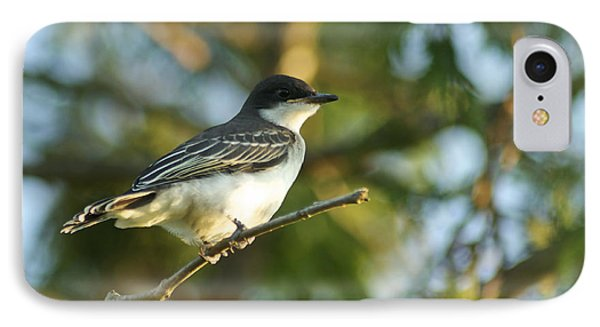 Gazing Eastern Kingbird  IPhone Case