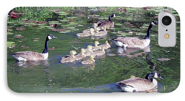 Geese And Goslings IPhone Case