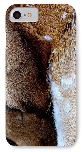Gentle Sleep IPhone Case