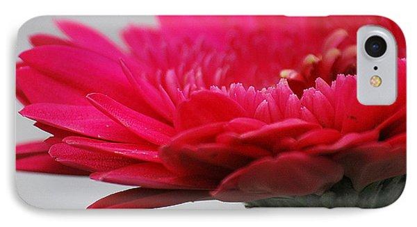 Gerber In Pink IPhone Case