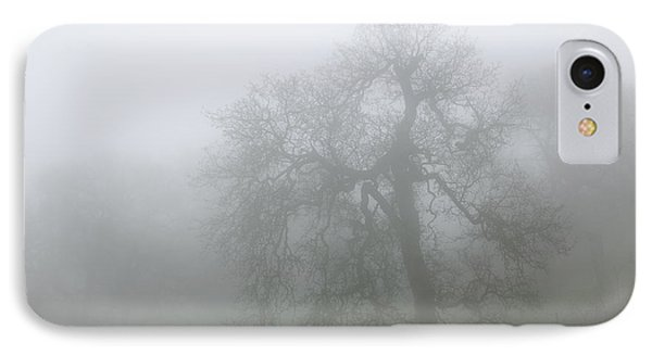 Ghostly Oak In Fog - Central California IPhone Case