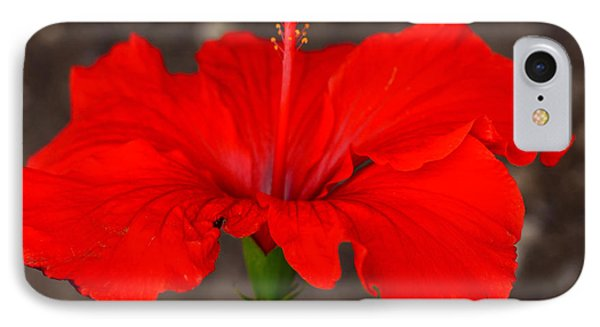 Glowing Red Hibiscus IPhone Case