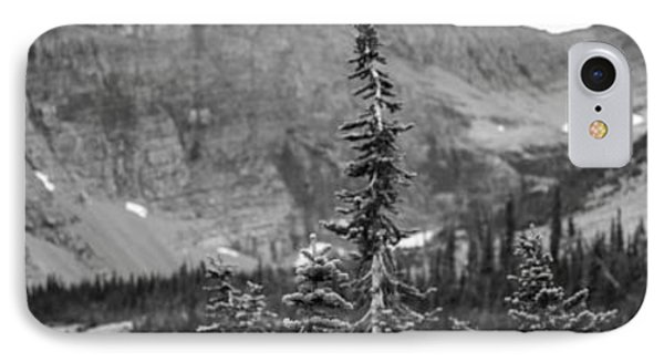Gnarled Pines IPhone Case