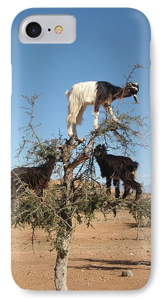 Goats In A Tree IPhone Case