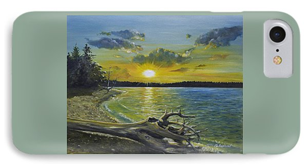 Golden Afternoon At Ketron Island IPhone Case