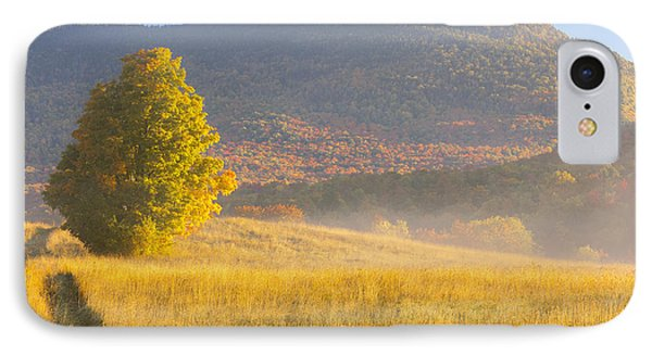 Golden Autumn Morning IPhone Case