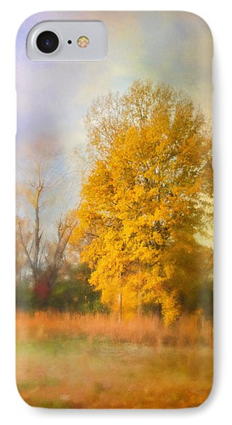 Golden Autumn Splendor - Fall Landscape IPhone Case