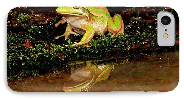 Golden Bell Treefrog, Litoria Aurea IPhone Case