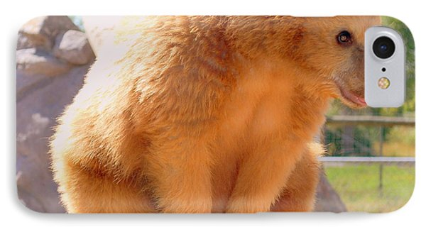 Golden Grizzly Cub IPhone Case