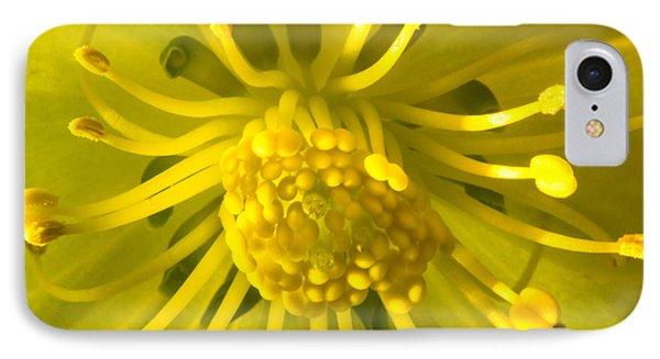 Golden Hellebore Glory IPhone Case