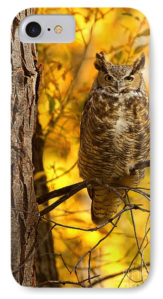 Golden Owl IPhone Case