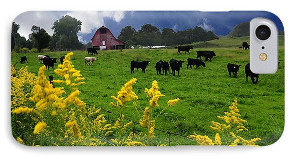 Golden Rod Black Angus Cattle  IPhone Case