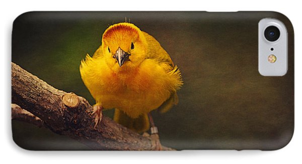 Golden Weaver Bird IPhone Case