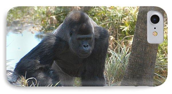 Gorilla 01 IPhone Case
