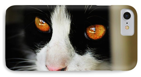 Gracie's Eyes IPhone Case