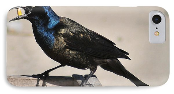 Grackle Chow Down IPhone Case