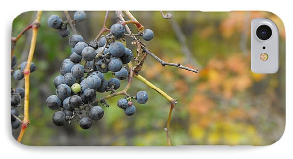 Grapes Left IPhone Case