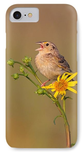 Grasshopper Sparrow Singing IPhone Case