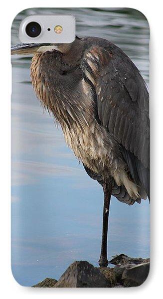 Great Blue Heron At Deep Water Lagoon IPhone Case