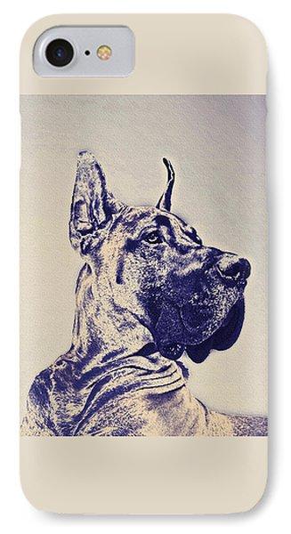 Great Dane- Blue Sketch IPhone Case