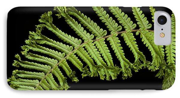 Green Curve IPhone Case