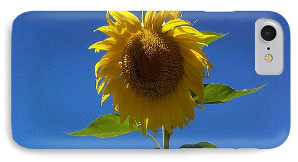 Sunflower With Open Arms IPhone Case