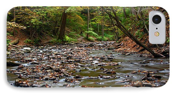 Creek Walk IPhone Case