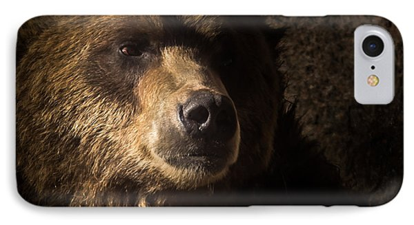 Grizzly 2 IPhone Case