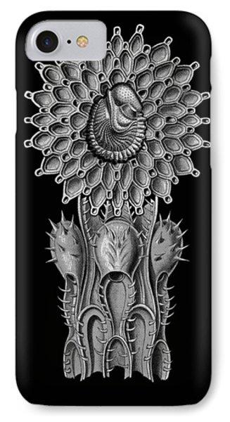 Haeckel Collage IPhone Case