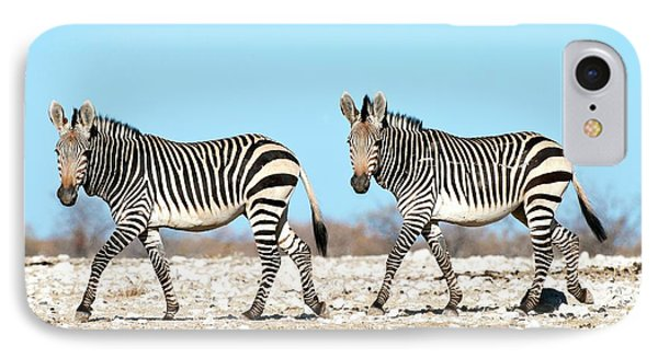 Hartmann's Mountain Zebra IPhone Case