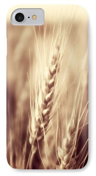 Harvest Time IPhone Case