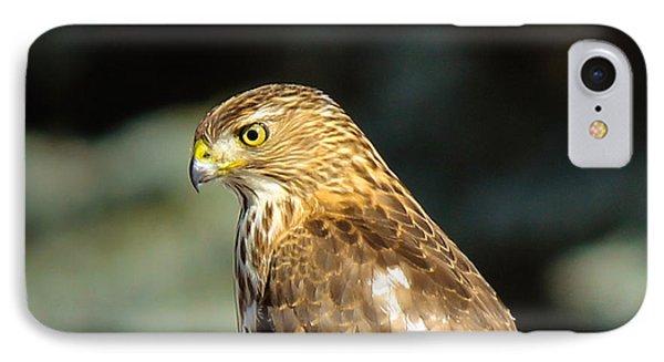 Hawk 2 IPhone Case