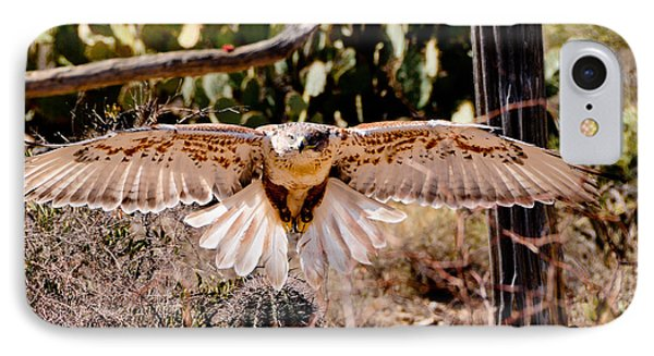 Hawk On The Hunt IPhone Case