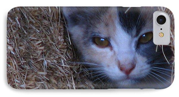 Haystack Cat IPhone Case