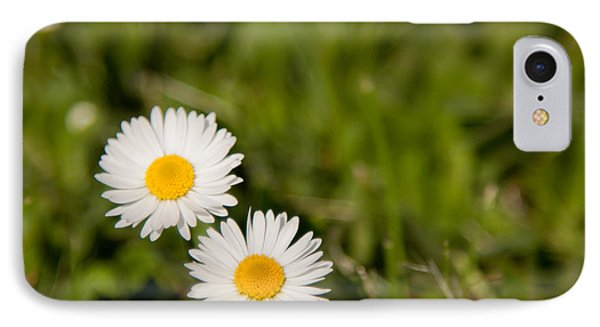 He Loves Me He Loves Me Not IPhone Case